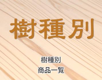 3prsp-jyushubetsu-356x280