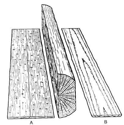 柾目と板目 Aが柾目・Bが板目