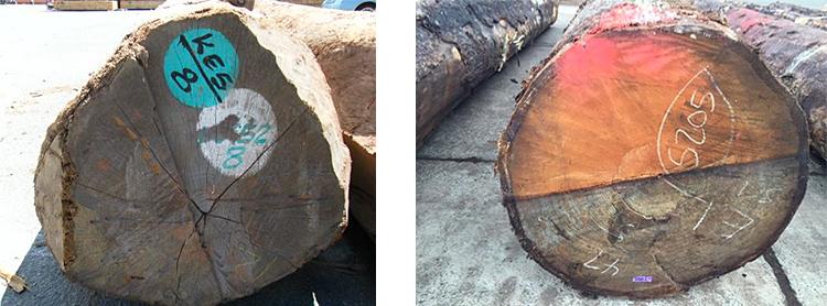 材木屋の真実 - 良質材の意味:目の細かさ