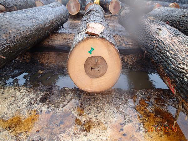 溢れる間違った木材の呼び名