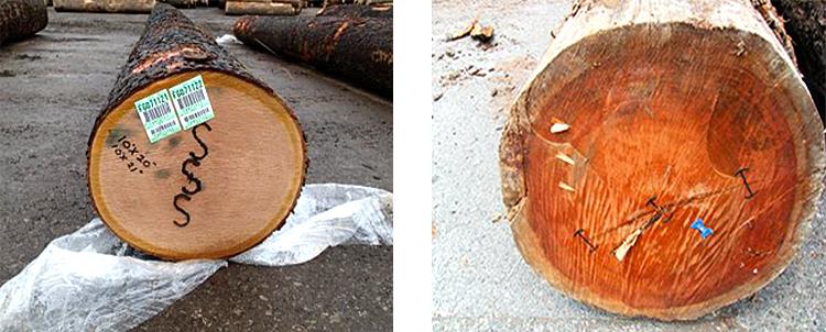 材木屋の真実 - 良質材の意味:産地