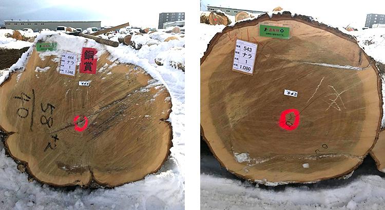 北海道産の優良材 ナラ原木