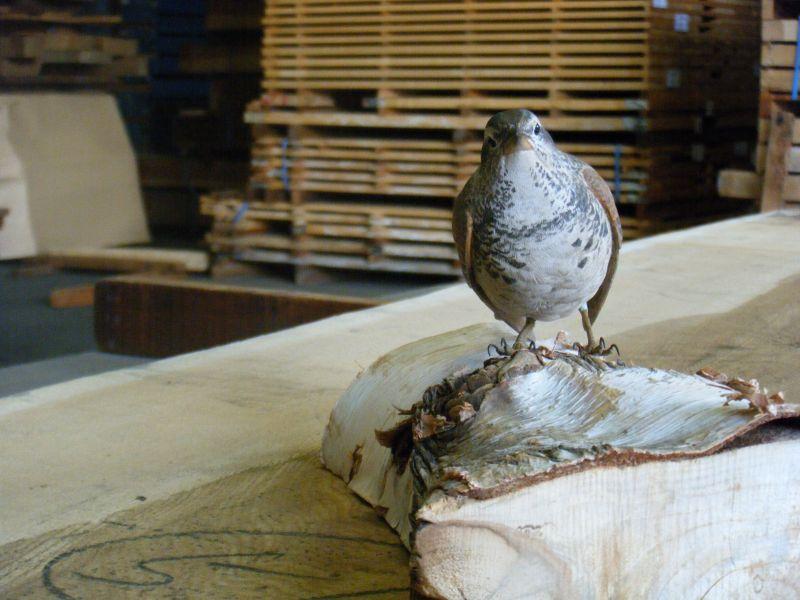 バードカービング用木材で作成した作品