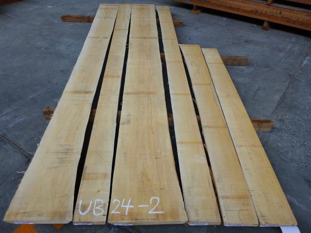 バスウッド 24ミリ 板目・柾目