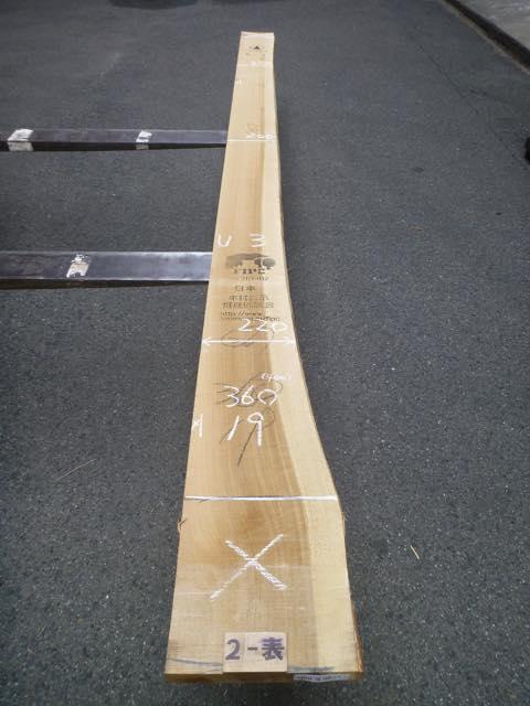 ホオ 36ミリ