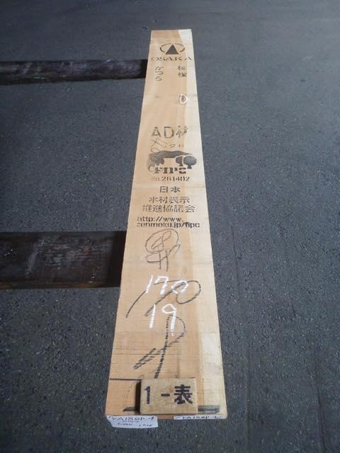 カツラ 18ミリ 柾目板