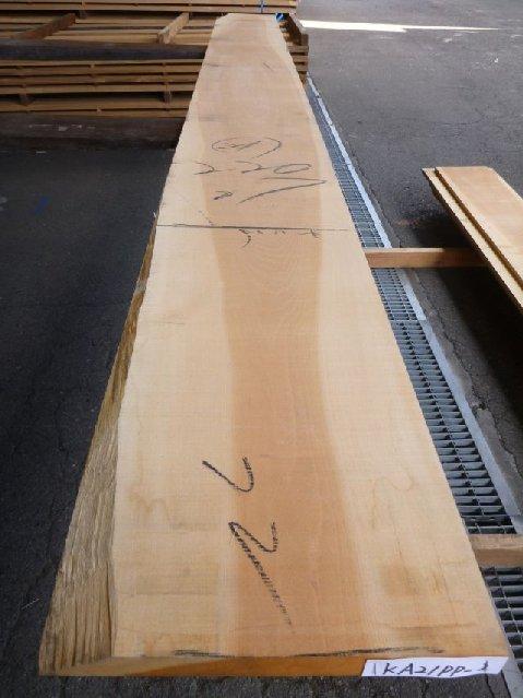 カツラ 21ミリ 板目