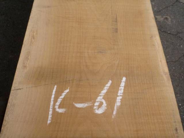 カツラ 耳断ち板 板目 K-61