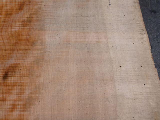 マカバ 平板 東京大学演習林材 M-37