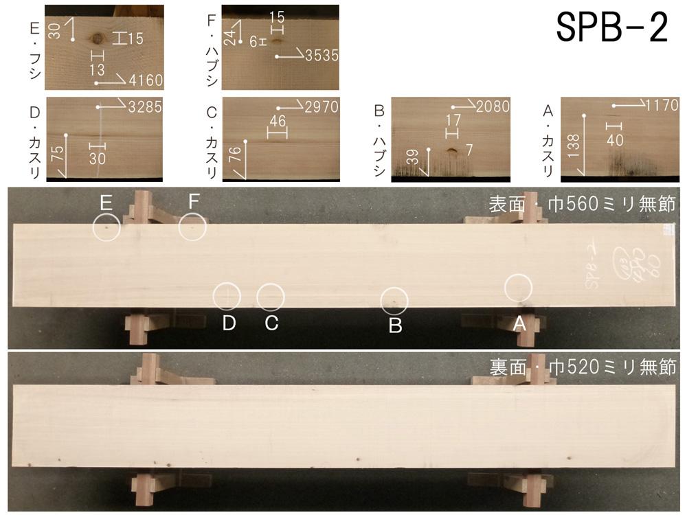 スプルース 和風高級店 カウンター用 SPB-2