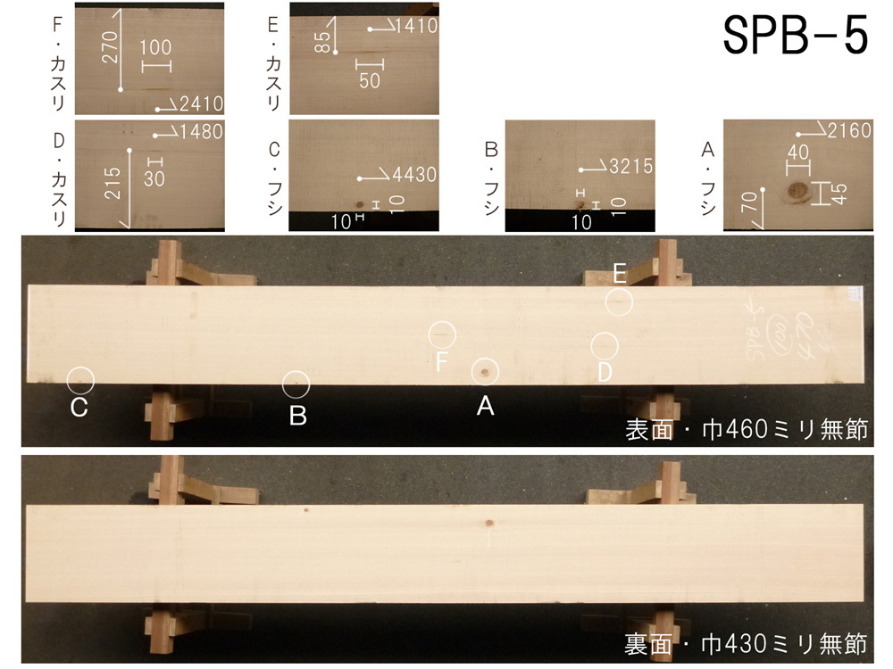 スプルース 和風高級店 カウンター用 SPB-5