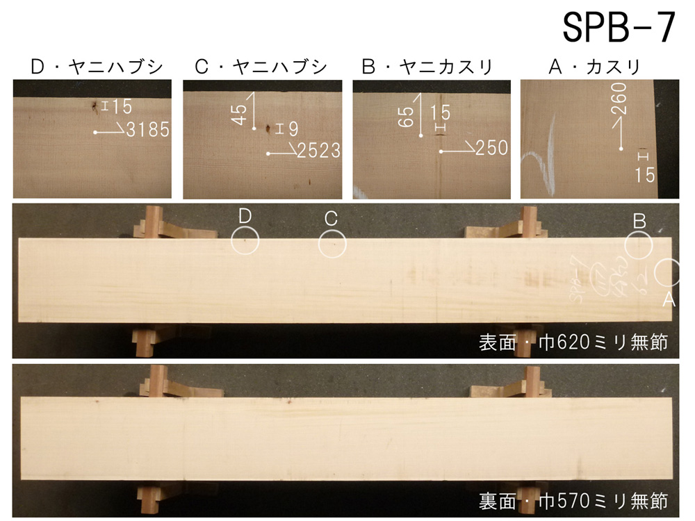 スプルース 和風高級店 カウンター用 SPB-7