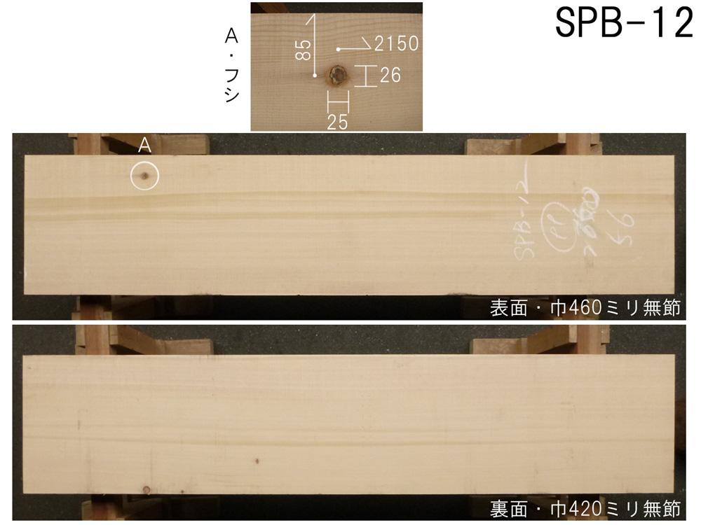 スプルース 和風高級店 カウンター用 SPB-12